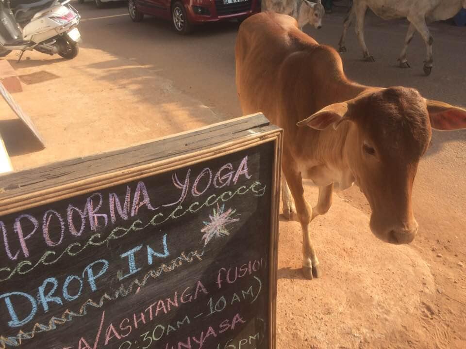 Sampoorna Yoga School Goa India